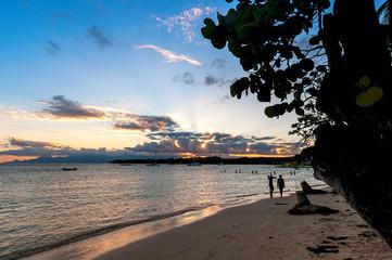 Tropical beach of Sainte Anne - Caribbean Sea - Guadeloupe tropical island.