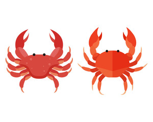 Red crab vector. Colorful crab vector. Aquatic animal in flat design vector. Flat style vector illustration isolated on white background.
