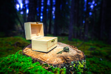 Special Treasure Gift Box And Antique Key In Deep Woods Forest