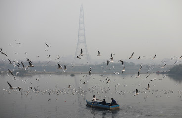 People ride a boat across Yamuna river on a smoggy morning in the old quarters of Delhi