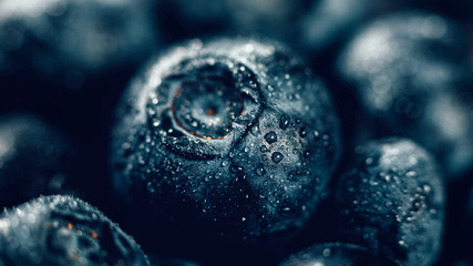 Blueberries Close Up