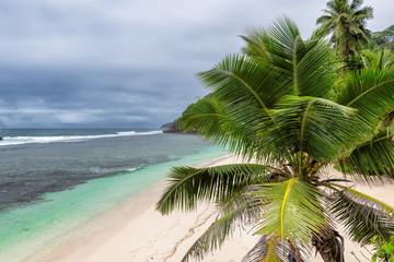 Palm trees on ocean beach with dramatic sky in tropical island, Seychelles.