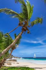 Fototapete - Paradise tropical beach.