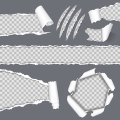 Obraz Realistic Seamless Torn Paper and Scratch Claws - fototapety do salonu