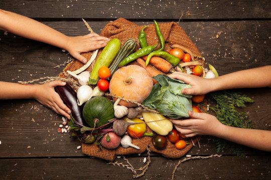 Fresh farm vegetables, organic healthy food. Agriculture harvest.