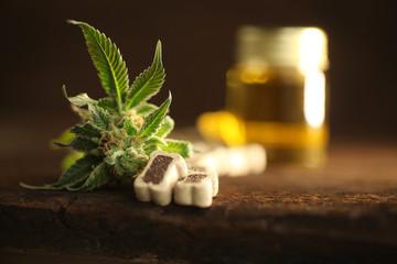 Medical marijuana cannabis cbd oil dog food