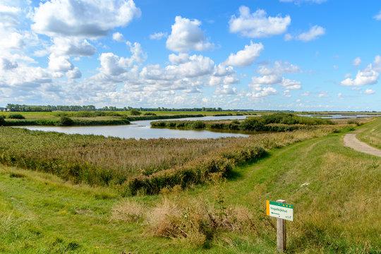 Landscape along the Eastern Scheldt in Holland