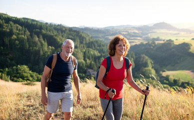 Senior tourist couple travellers hiking in nature, walking and talking. Fotobehang