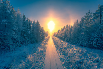 Photo sur Plexiglas Arbre Snowy winter railroad view. First snow sunset landscape. Photo from Sotkamo, Finland.