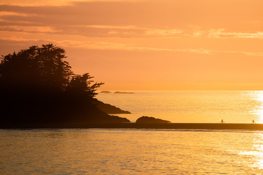 Tofino Harbour, Vancouver Island. British Columbia, Canada. Long beach at sunset