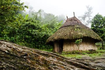 Indigenous hut in Ciudad Perdida in Colombia