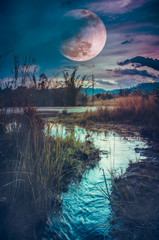 Wall Mural - Landscape at night time in the forest lake with fogy and darkness sky super moon in the background.
