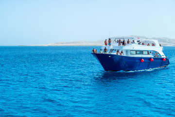 Trip for Diving and snorkeling in Eygpt Red Sea Mahmya and Paradise Island  Wall mural