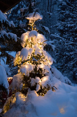 christmas tree with glowing chain of lights in the snow