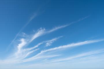 Nuages cirrus en formation dans le ciel de la normandie.Cirrus clouds forming in the sky of Normandy