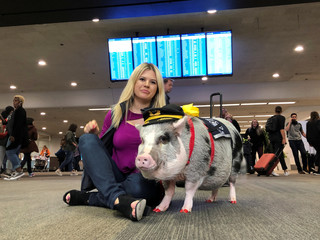 LiLou the therapy pig and her owner Tatyana Danilova pose for a photograph at San Francisco International Airport in San Francisco, California