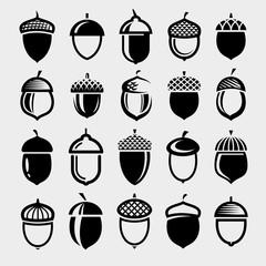 Acorns set. Collection icon acorns. Vector