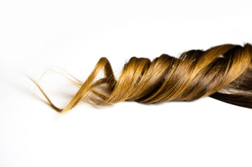 piece of brown curly hair on white isolated background