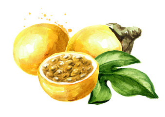 Whole and half yellow passion fruit or maracuya with green leaf. Watercolor hand drawn illustration, isolated on white background