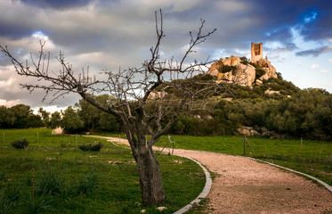 Olbia, the ancient medieval tower of the castle of Pedres, at sunset, Sardinia - Italy