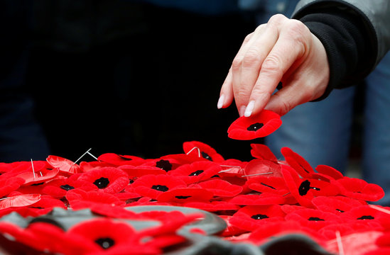 A woman places a poppy on the Tomb of the Unknown Soldier at the National War Memorial on Remembrance Day in Ottawa
