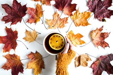 Kolorowe liście na białym tle. Jesienna kompozycycja z kubkiem herbaty.