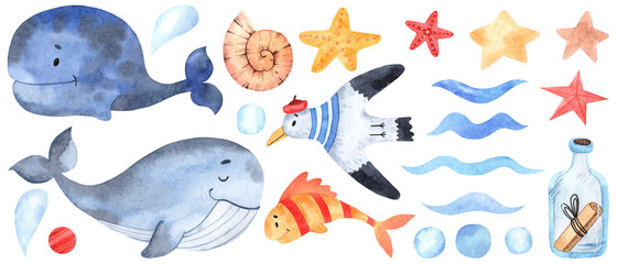 Watercolor marine elements for design and decoration. Great for postcards, posters, coupons, baby items design, decorative paper and any design.