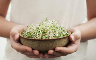Microgreen or alfalfa sprouts in the bowl .