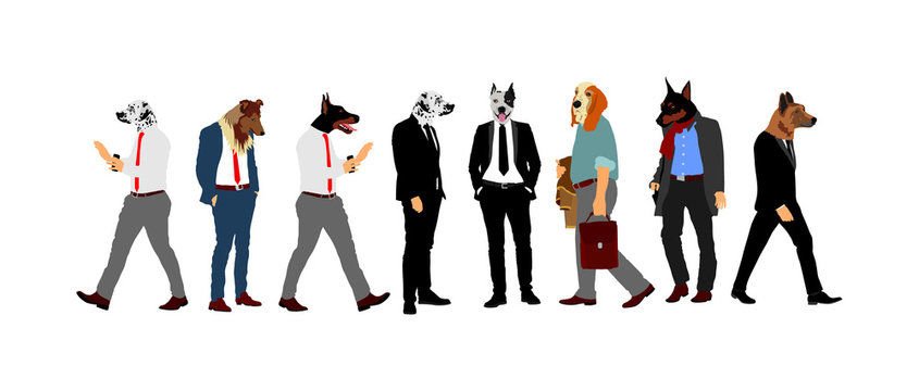 Elegant macho man with dog head. Staffordshire pit bull terrier over manager face. Confident leader standing. Doberman Businessman crew vector illustration. Handsome man in black suite with dog face.