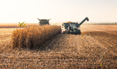 Combine Harvester Machine Finishing Work on a Agricultural Corn Field