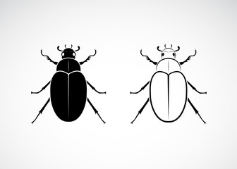 Vector of cockchafer (Melolontha melolontha) isolated on white background. Insect. Animals. Easy editable layered vector illustration.