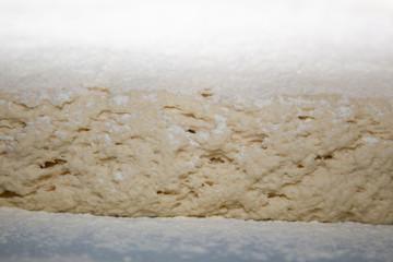 closeup of raw dough with flour