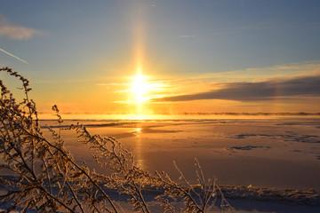 Foto op Aluminium Zee zonsondergang sunset over field