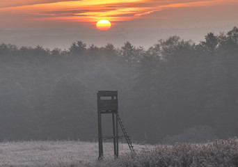 Foto op Aluminium Jacht beautiful sunrise over the valley where the hunting tower stands on a beautiful frosty morning