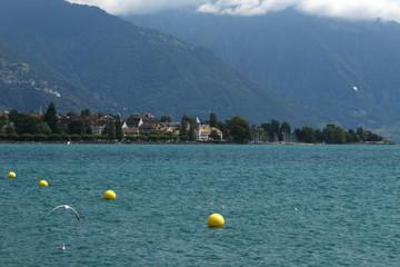 Yellow drifting buoys and flying gulls at Vevey, Lake Geneva, Switzerland in summer