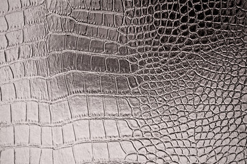 In de dag Krokodil Vintage crocodile skin texture