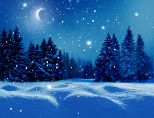 Winter  background .Merry Christmas and happy New Year greeting card with copy-space. Christmas night landscape with moon  and fir trees