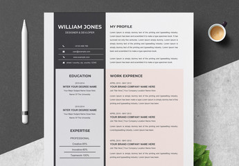 Resume Layout with Pastel Colors