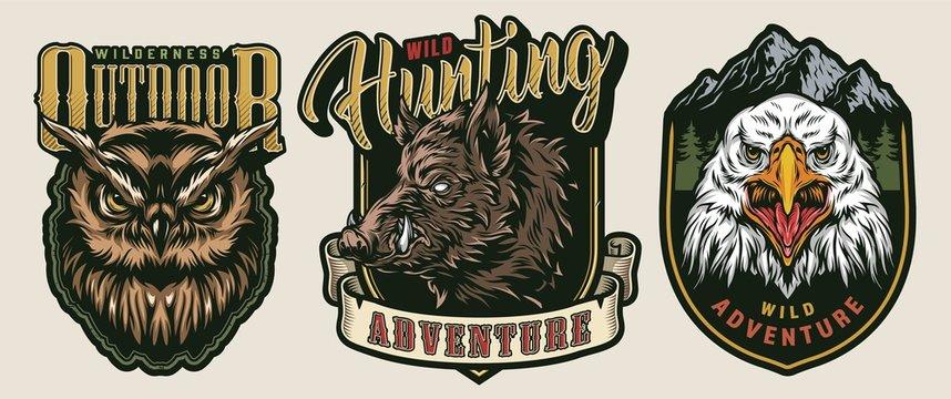 Vintage wild animals colorful badges