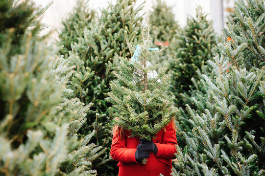 Young girl holding Christmas tree at the market.