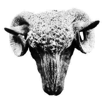 Halftone Ram Head isolated on white background
