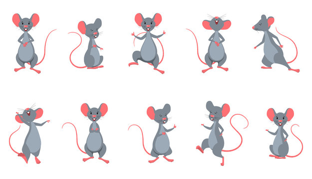 Set Rats (Mice) in Different Poses. Funny Cheerful Characters Isolated