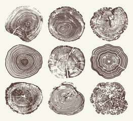 Wood Tree Rings Vector Set