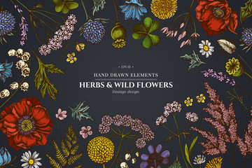 Floral design on dark background with shepherd's purse, heather, fern, wild garlic, clover, globethistle, gentiana, astilbe, craspedia, lagurus, black caraway, chamomile, dandelion, poppy flower, lily Fotomurales