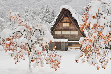 【世界遺産】[岐阜県]白川郷の冬景色