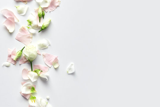 Flowers composition. Rose flower petals on white background with copy space. Gentle petals top view