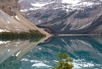 Kanada, Bow Lake am Icefields Parkway, Rocky Mountains