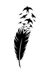 Print art concept colorful design tattoo black feather flying birds swallows silhouette. Vector illustration fly magical pen writer writing