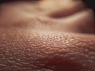 macro skin of human hand.Medicine and dermatology concept. Details of human skin background. Wall mural