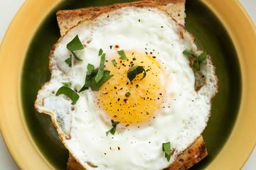 fried egg sandwich. Toast for breakfast, lunch.